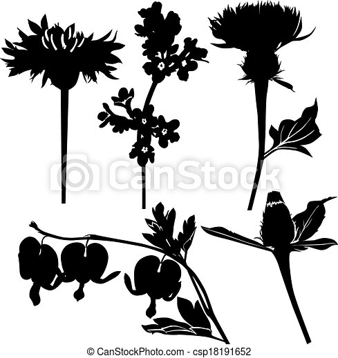 Clipart Vector of Wildflowers drugs csp18191652 - Search ...
