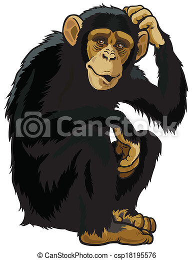 Clip Art Chimpanzee Clipart chimpanzee illustrations and clipart 5603 royalty chimpanzeesimia troglodytessitting posepicture isolated