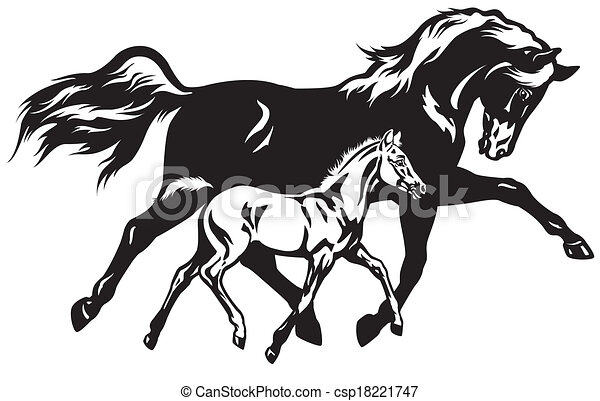 Foal Stock Illustration Images. 1,314 Foal illustrations available ...