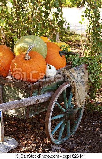 Pumpkins still-life - csp1826141