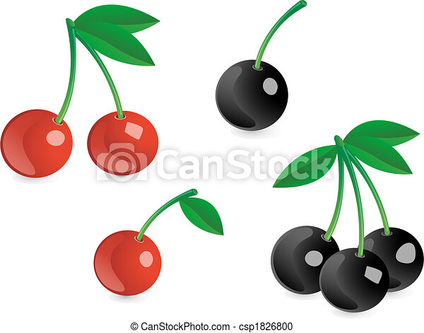 Tasty berries - csp1826800