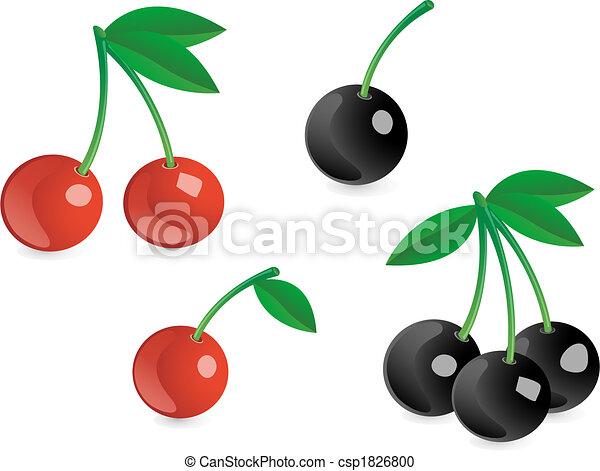 Tasty berries - csp1826800