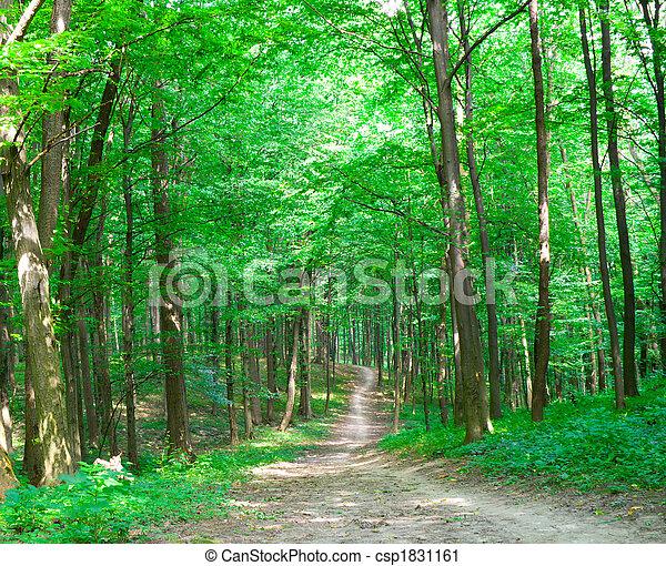 Natur - csp1831161