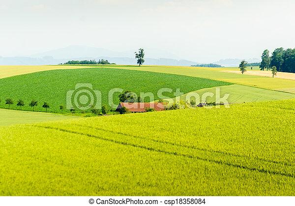 rural summer landscape - csp18358084