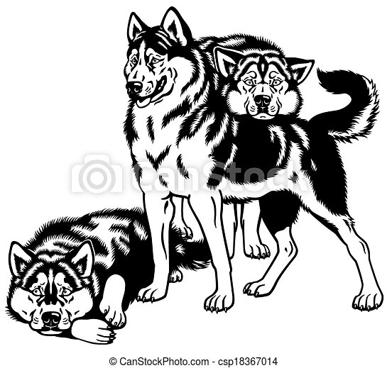 Vector Clip Art of siberian husky dogs - three siberian husky sled ...