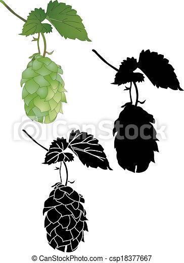 Hop culture agriculture plant  - csp18377667