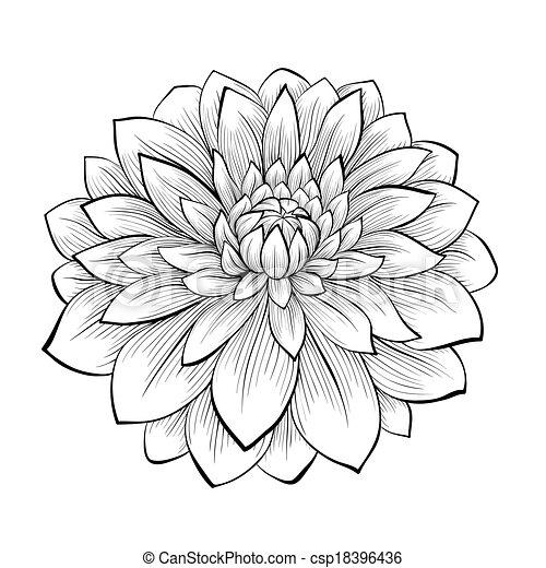 vecteurs de beau, fleur, isolé, arrière-plan noir, monochrome