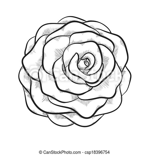 Black And White Roses Clipart - More information