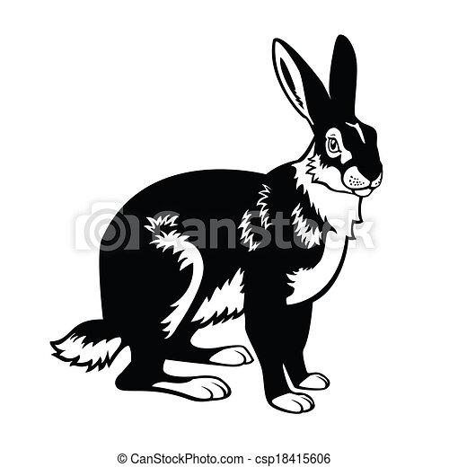 hare black white  - csp18415606