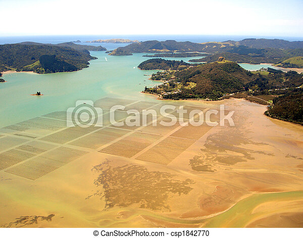 Aerial view of ocean agriculture in Whangaroa Harbour, Northland, New Zealand - csp1842770