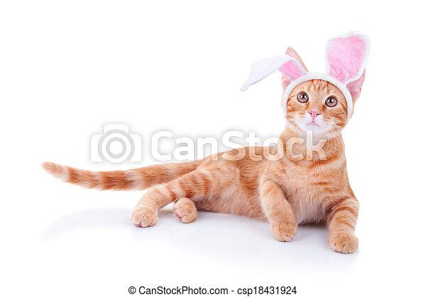 復活節,  bunny - csp18431924