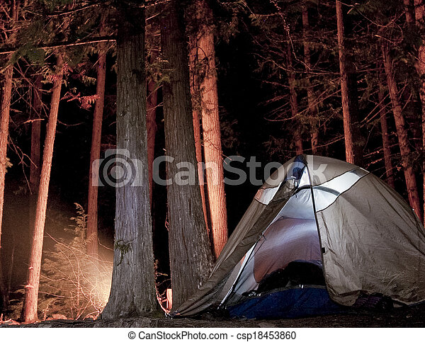 Campsite in the Woods at Night - csp18453860