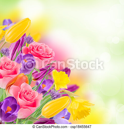 Beautiful bouquet of flowers. - csp18455647
