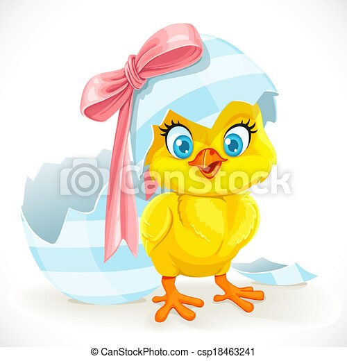 Cute baby chick just hatched from an Easter egg - csp18463241