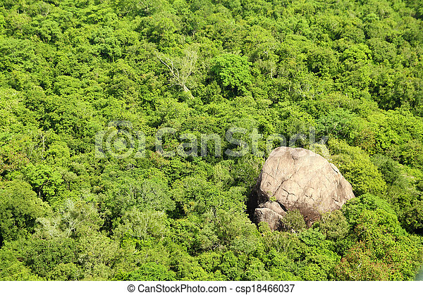 jungle aerial view - csp18466037