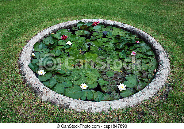 Stock photography of garden pond with water lotus small for Round garden pond designs