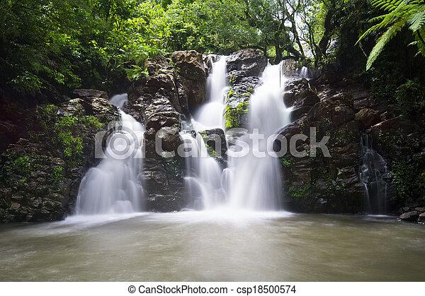 Fiji Waterfall - csp18500574