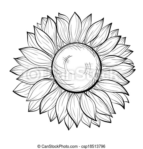 Lodge Plans Site Layout further Colombes Pigeons Ensemble 17193872 also Symbolic Beautiful Bride In Wedding 16188681 moreover Stock Illustration Vintage Decorative Text Dividers Collection Hand Drawn Vector Design Elements Image50326146 furthermore Bunting 19001107. on wedding plans