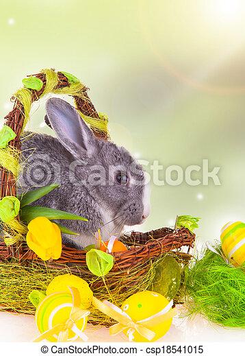 Easter rabbit - csp18541015