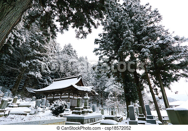 Beautiful Winter forest (Japanese cemetery)