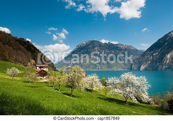 spring scenery at lake lucern - csp1857849