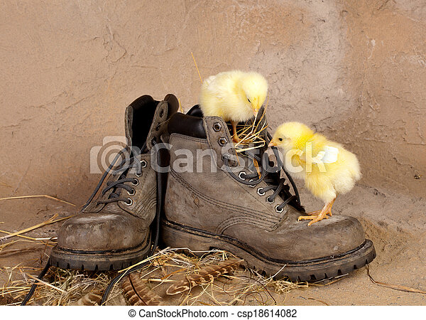 Boot climbing easter chicks - csp18614082