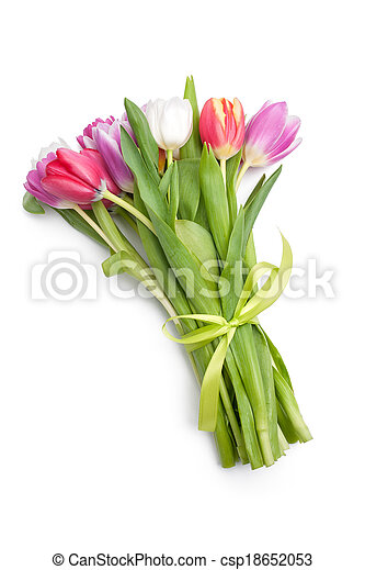 Posy of spring tulips flowers - csp18652053