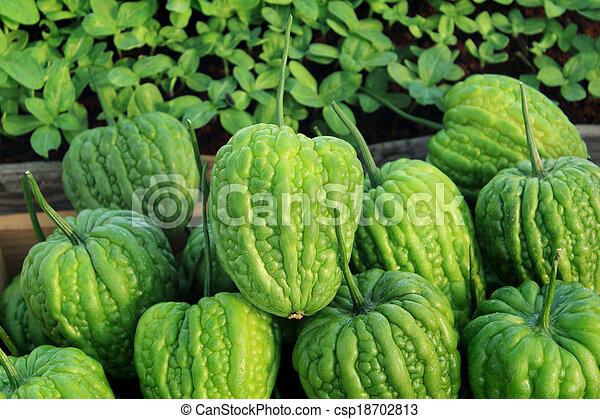 Bitter melon - csp18702813