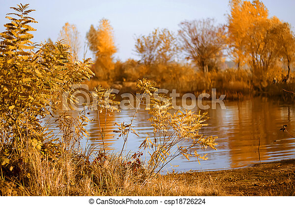 autumn nature - csp18726224