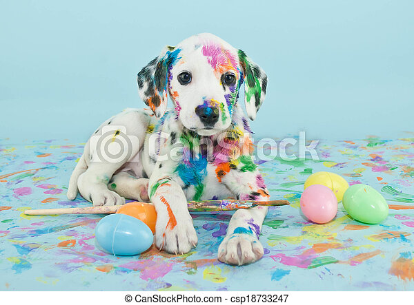 Ostern, junger Hund,  dalmatain - csp18733247