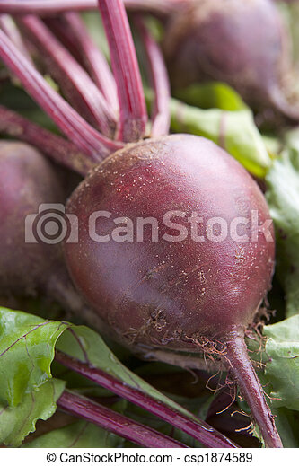 Bunch Of Beetroot - csp1874589