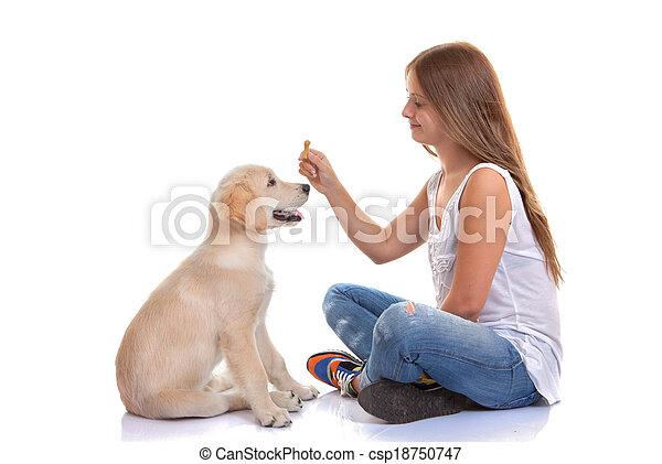 owner training puppy dog - csp18750747