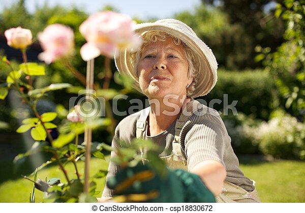 senioren suchen senioren Freiberg
