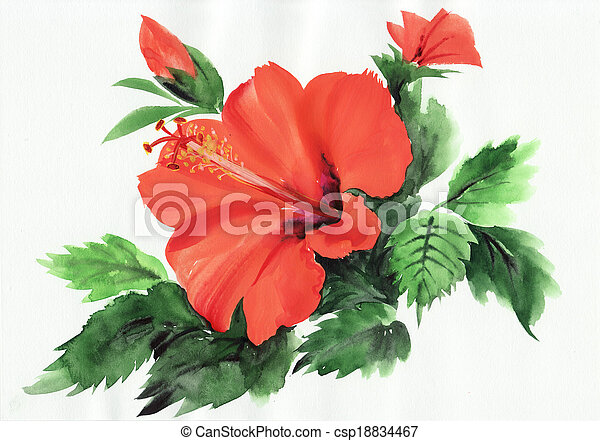 stock bild von hibiskus hei rotes aquarell original gem lde von csp18834467 suchen. Black Bedroom Furniture Sets. Home Design Ideas