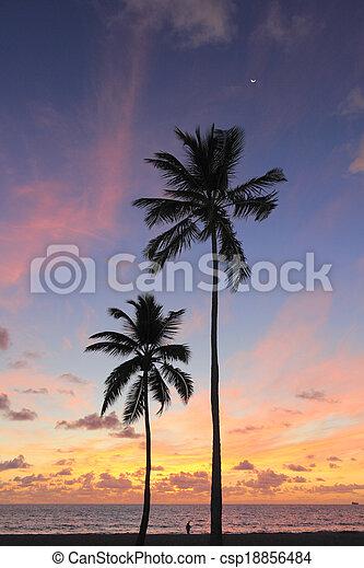Beautiful Coast Sunrise - csp18856484