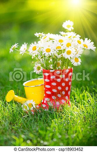 Spring flowers - csp18903452