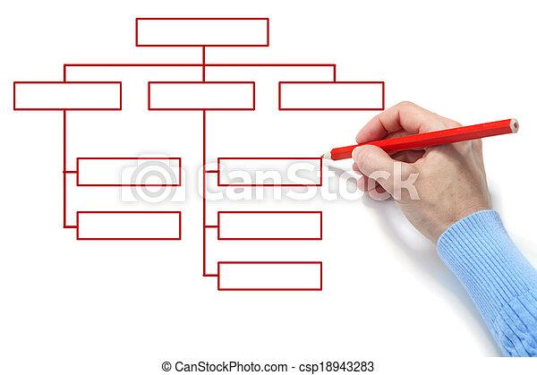 Organization chart - csp18943283