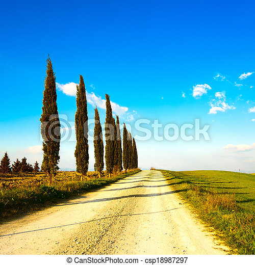 Tuscany, cypress tree group row and white rural road on sunset. Siena, Orcia Valley, Italy, Europe. - csp18987297