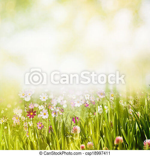 Summer forest, abstract natural backgrounds - csp18997411