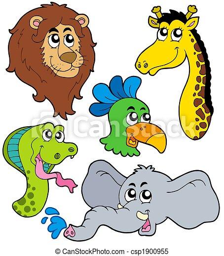 ZOO animals collection 6 - csp1900955