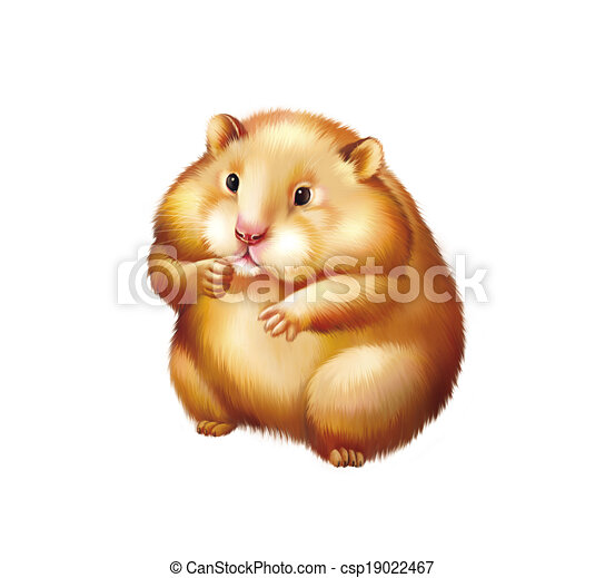 Stock Illustration of Cute red Hamster sitting, Isolated on white ...