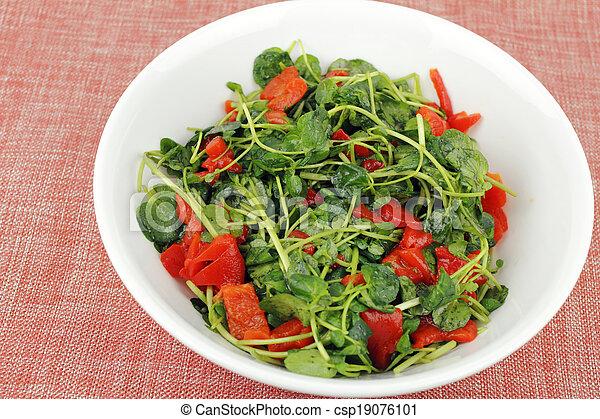 Tasty Watercress Salad - csp19076101