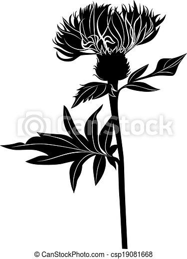 Clip Art Vector of Milk thistle thistle flowers csp19081668 ...