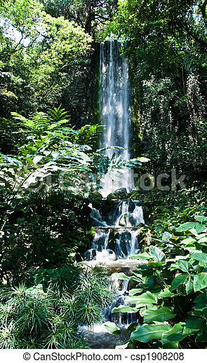 refreshing waterfall - csp1908208