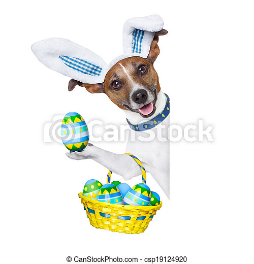 dog easter bunny - csp19124920