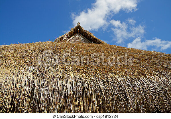 Thatched roof - csp1912724
