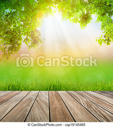 Fresh spring green grass and wood floor with green leaf , Summer time - csp19145465