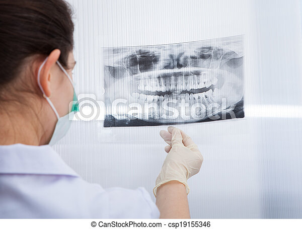 Female Dentist Looking At Dental Xray - csp19155346