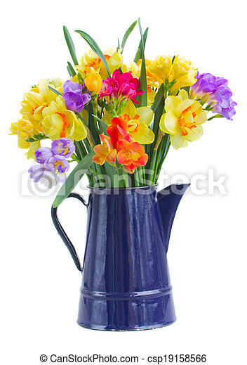 Photo , bleu, pot, Jonquille, freesia, fleurs