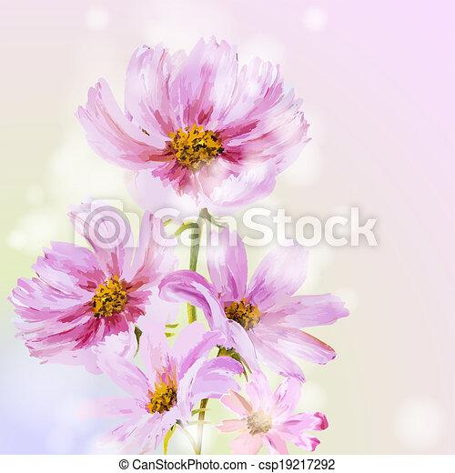 Cosmos flowers background. - csp19217292